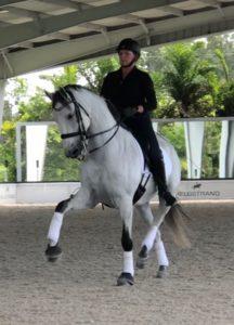 Woman on gray dressage horse