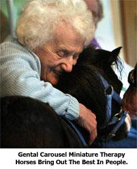 Older woman hugging black miniature horse
