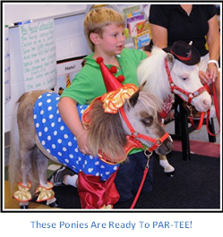 Gentle Carousel Therapy Horses with a Young Boy