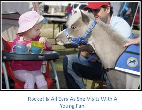 Gentle Carousel Therapy Horses Meet Fan