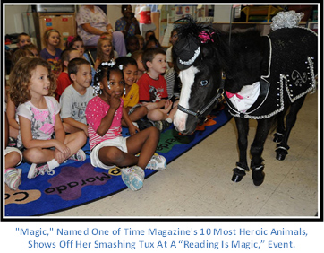 Gentle Carousel Therapy Horses Magic is Reading Event