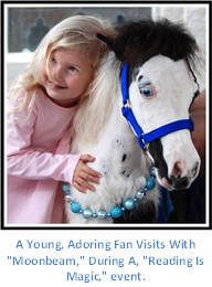 Gentle Carousel Therapy Horses Magic is Reading Event with Young Adoring Fan.