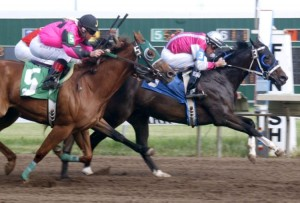 Black and sorrel racehorses on track