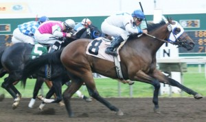 Horses Race to the Finish Line - Inside Track on Horse Racing