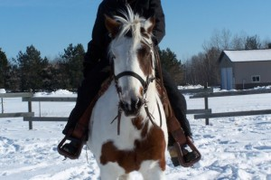 Riding a bay paint horse in the snow
