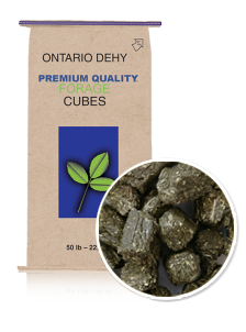 product-ontario-dehy