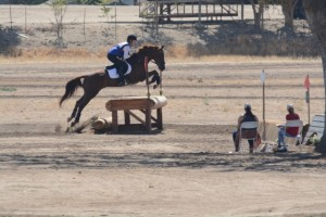 girl jumping bay horse over table fence