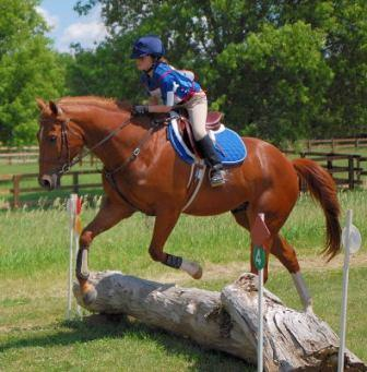 young girl jumping sorrel horse over log