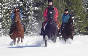 3 women riding their horses through the snow