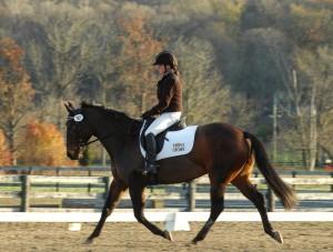 woman riding bay horse english