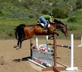 Girl jumping bay horse