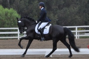 Woman riding black dressage horse