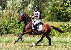 woman riding bag horse