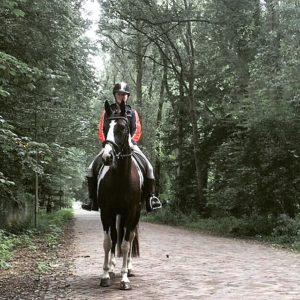Woman on black and white paint horse trail riding