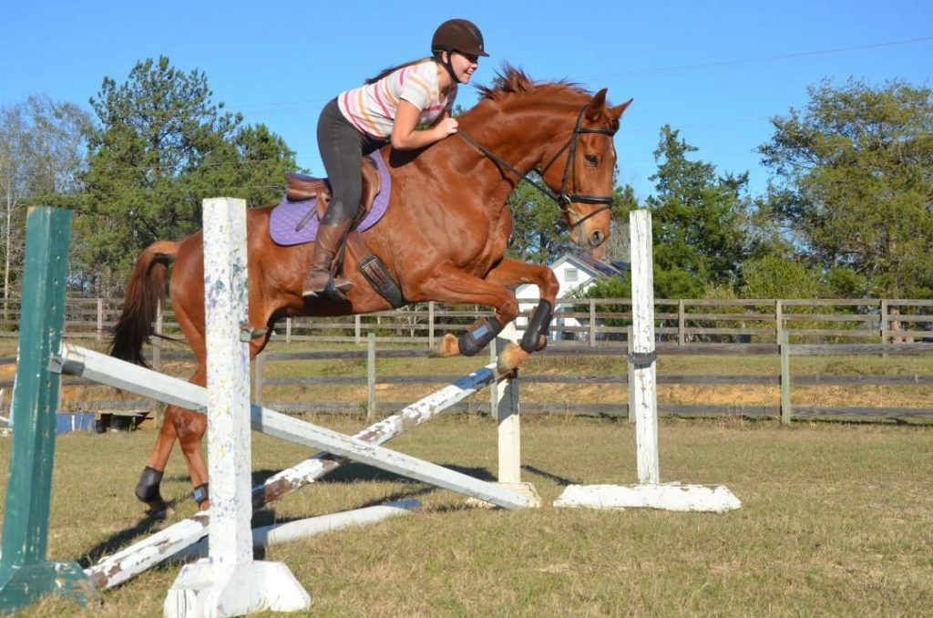 Girl jumping a chesnut thoroughbred