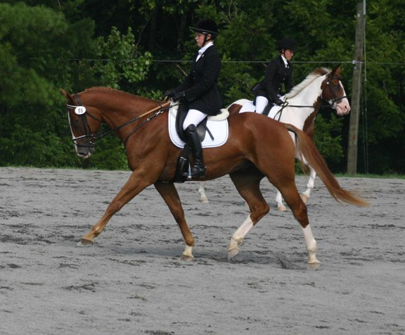 Woman on sorrel dressage horse