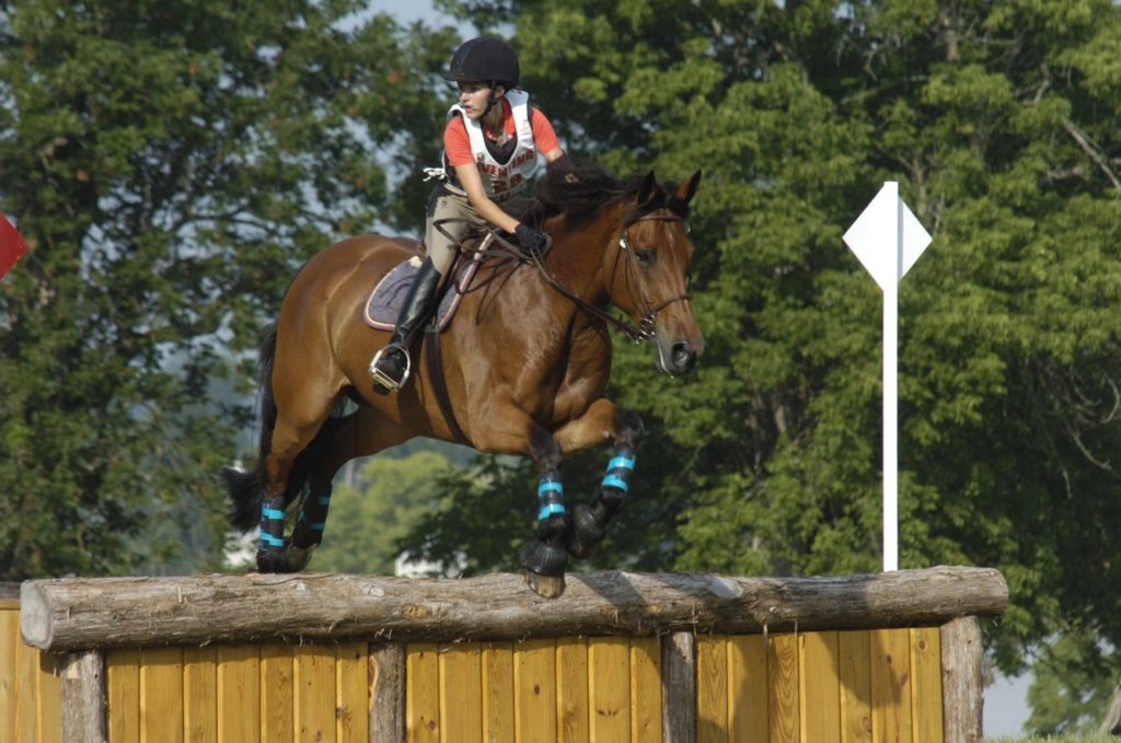 girl jumping large bay horse over fence