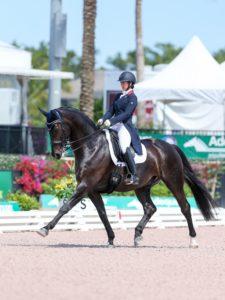 Women riding black dressage horse