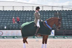 Woman on chesnut dressage horse