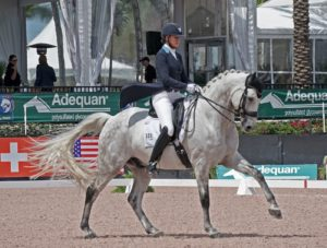 Woman riding gray dressage horse