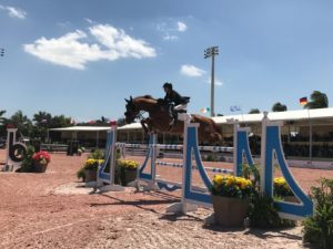 Women jumping chesnut horse