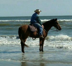 Man riding horse along beach