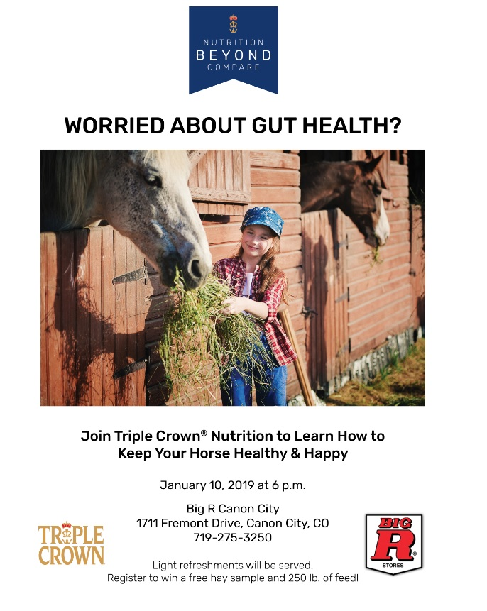 Worried About Gut Health- Big R Canon City seminar @ Cañon City   Colorado   United States