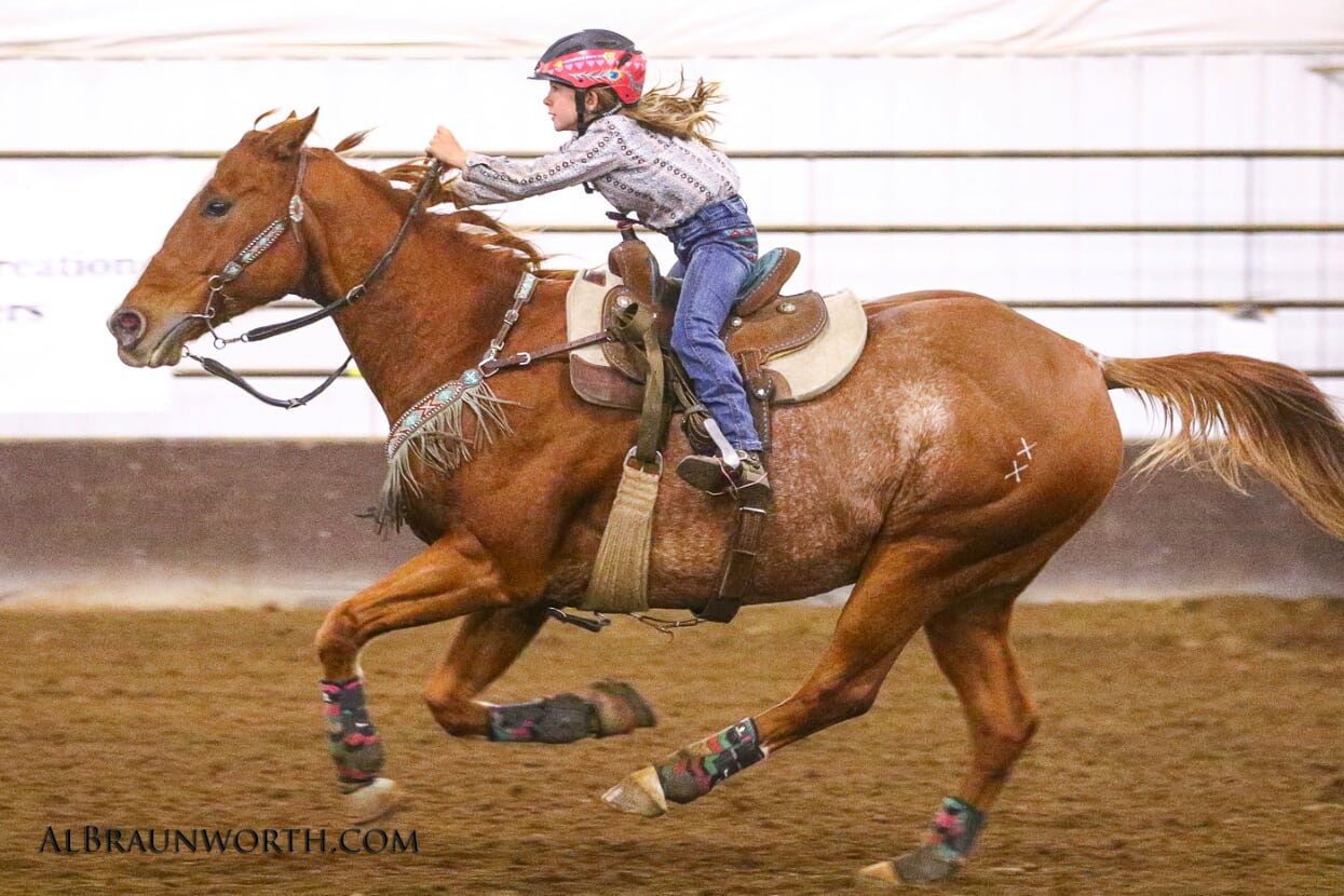 Nutrition For The Working Senior Horse Triple Crown Feed