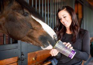 Woman feeding bay horse