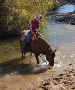 Girl riding buckskin horse through a creek