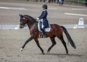 woman on bay dressage horse