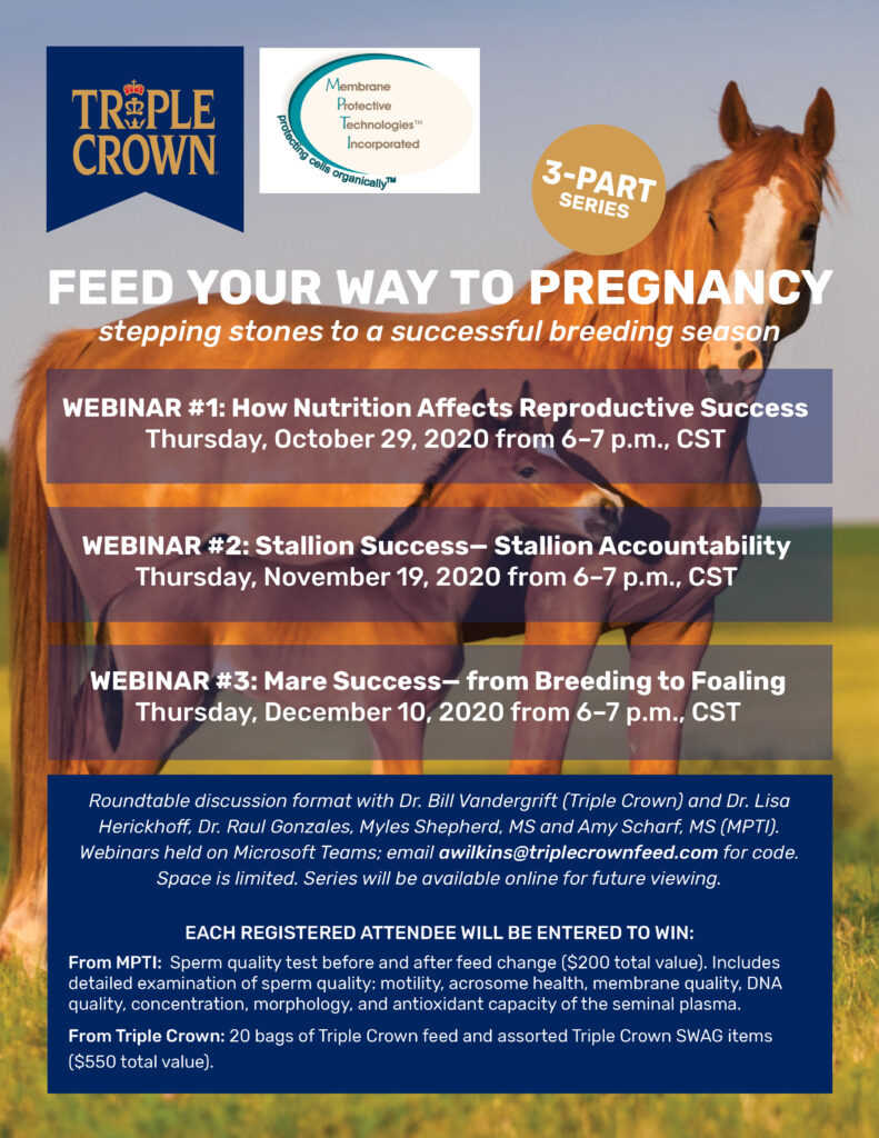 Webinar #3: Mare Success- From Breeding to Foaling